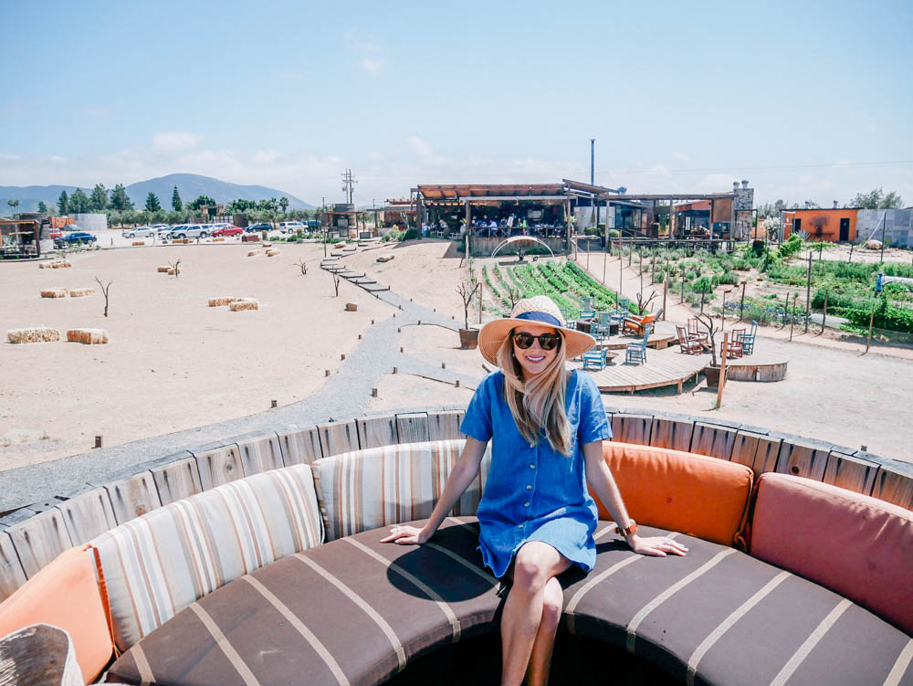Weekend Wine Getaway in Valle de Guadalupe, Mexico