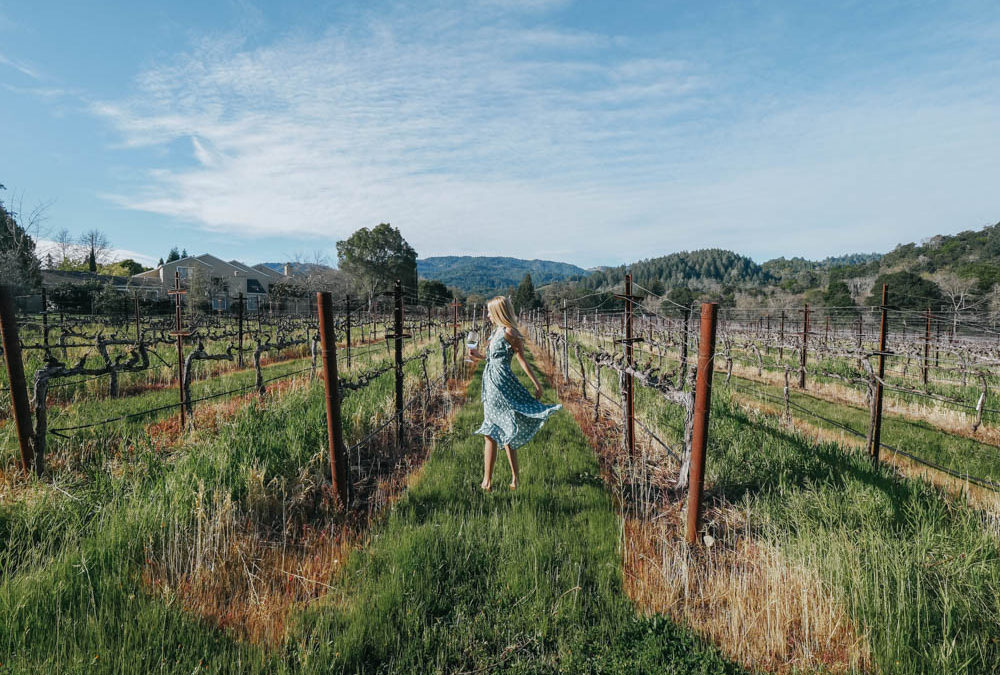 Napa Valley Guide: Where to Stay, Wine & Dine